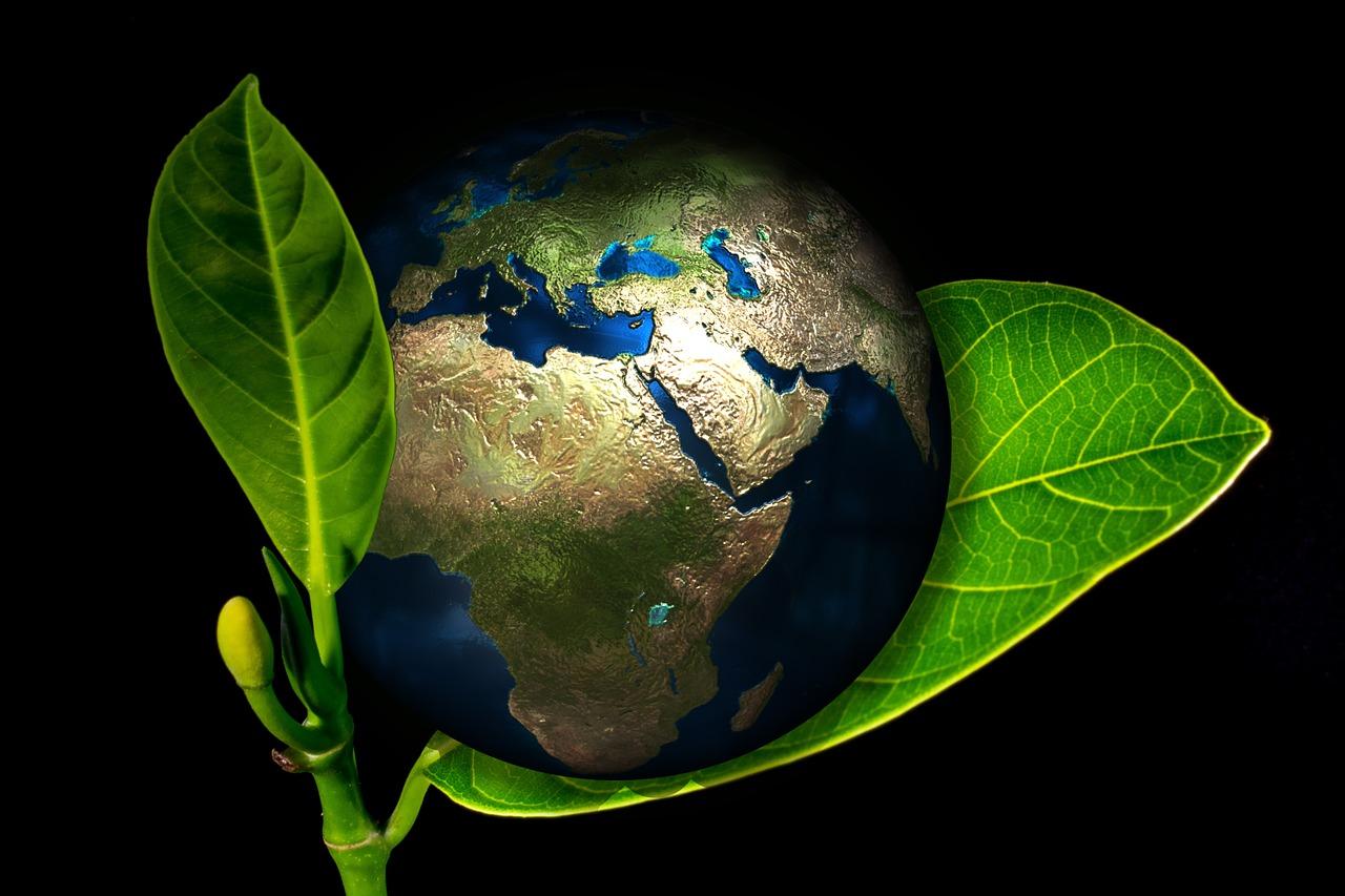 Sustentabilidade: A influência da digitalização de documentos para o meio ambiente